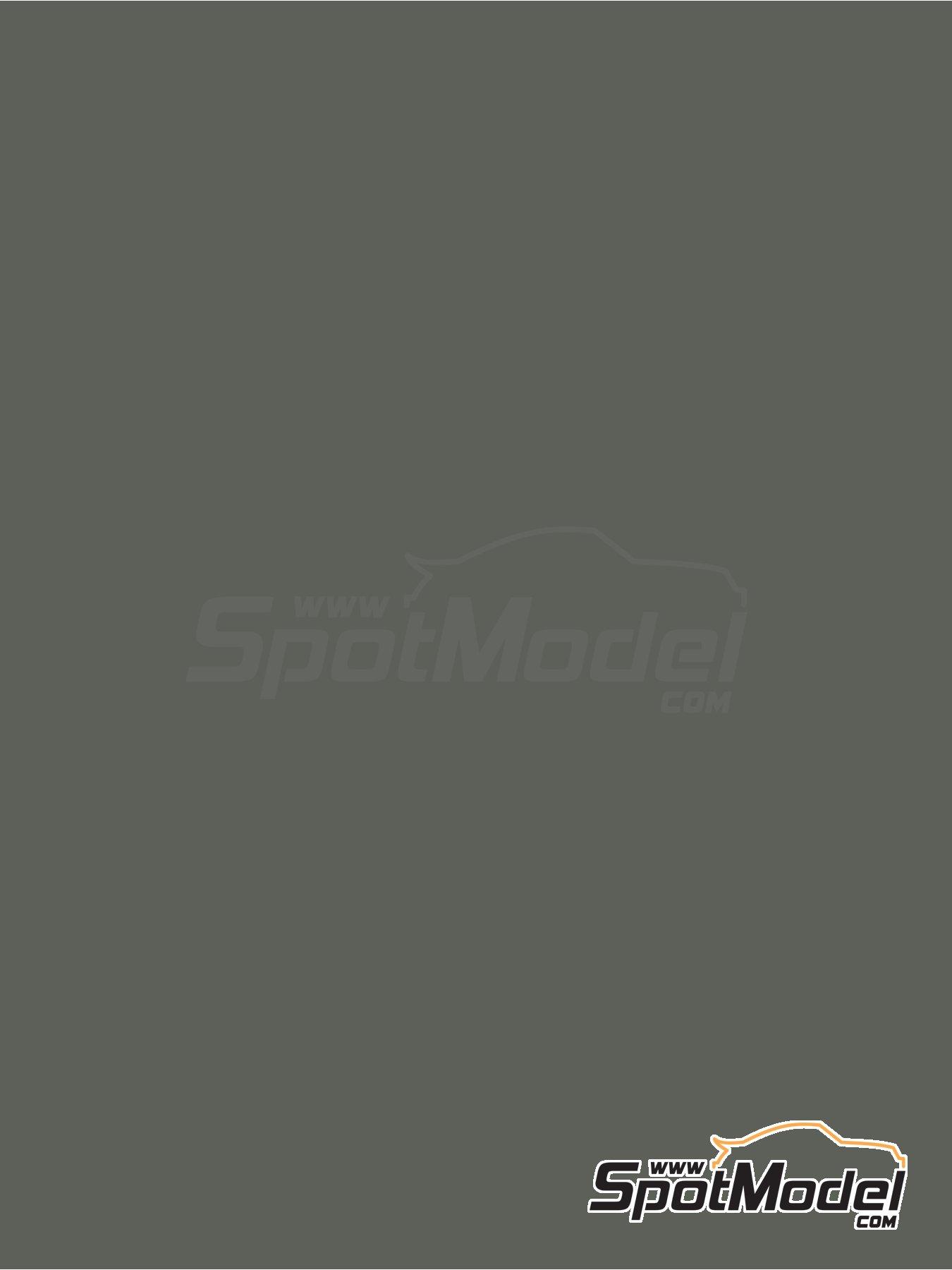 Gris verdoso - RAL7009 - Green grey - 1 x 60ml   Pintura fabricado por Zero Paints (ref.ZP-1033-RAL7009) image