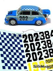 Arena: Model car kit 1/24 scale - Abarth 1000 TCR #202 - Campanini - Trento Bondone 1970 - resin multimaterial kit