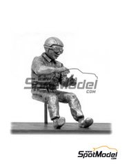 Denizen: Figure 1/43 scale - F1 driver