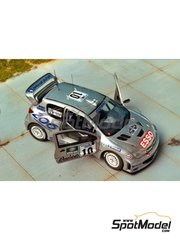 Renaissance Models: Model car kit 1/43 scale - Peugeot 206 WRC - Svezia Sweden Rally 2000 - resin multimaterial kit