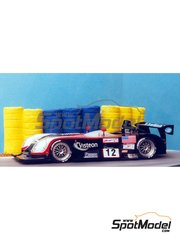 Renaissance Models: Model car kit 1/43 scale - Panoz Le Mans P Roadster-S  #11, 12 - 24 Hours Le Mans 1999 - resin multimaterial kit