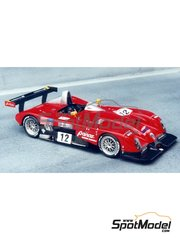 Renaissance Models: Model car kit 1/43 scale - Panoz Roadster-S Le Mans P2000 #11, 12 - 24 Hours Le Mans 2000 - resin multimaterial kit