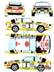 Scale Production: Transkit 1/24 scale - Audi Quattro Sport