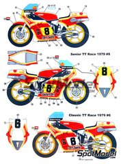 Studio27: Marking / livery 1/12 scale - Suzuki RGB500 #8 - Mike Hailwood (GB) - Motorcycle World Championship 1979 - water slide decals, assembly instructions and painting instructions
